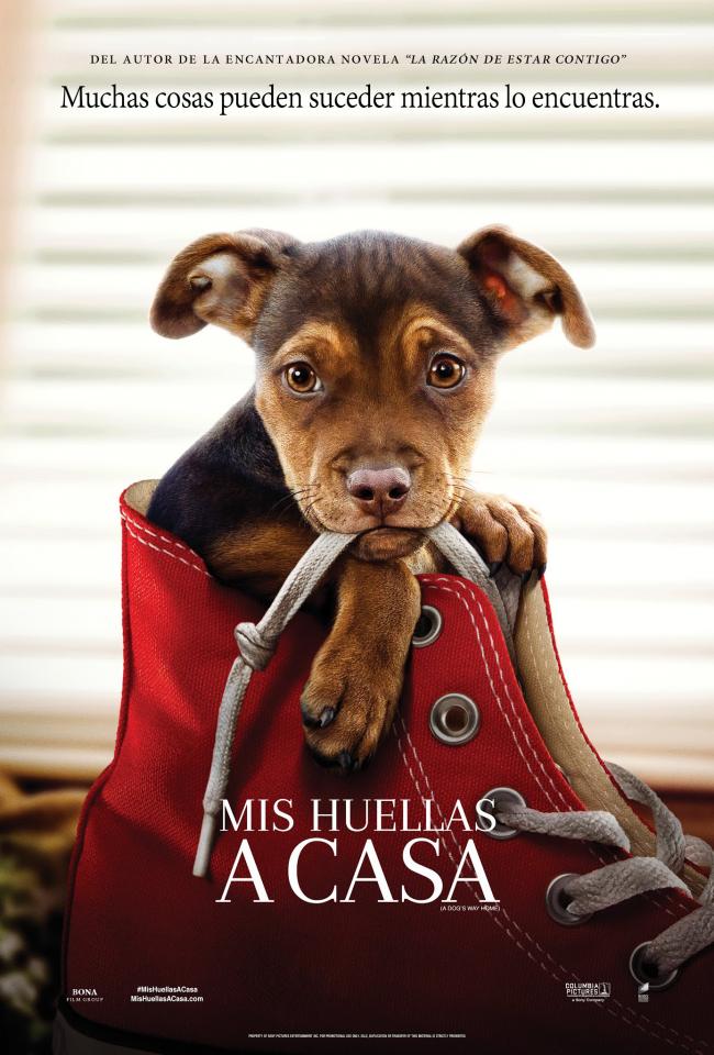 Mis Huellas A Casa (estreno)